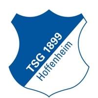 Competition logo for TSG 1899 Hoffenheim