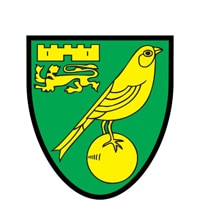 Competition logo for Norwich City