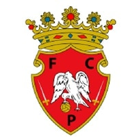 Competition logo for Penafiel