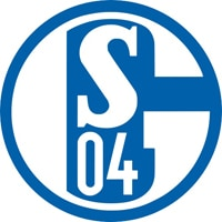 Competition logo for FC Schalke 04
