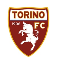 Competition logo for Torino